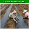 200 micron black mulch film, blow plastic mulch film, agriculture mulch film for sale