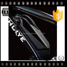 2 year warranty! Japan OEM factory bottle/tube Hot sale lifepo4 48 volt battery for e-bike/motorcycle 19ah