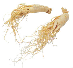 80% panaxoside/ Ginseng Root Extract,Panax Ginseng Root Extract