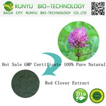 Hot Sale GMP Certificate 100% Pure Natural Red Clover Extract