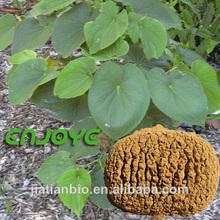 Natural de kava, fiji kava, extracto de kava kava 70% kavalactonas en polvo