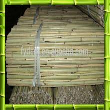 De bambu canes preço baixo