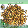 100% Natural Barley Malt Extract in fine powder