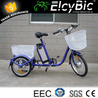 adults 350w big loading buy 3 wheel electric bike with basket for older made in China(E-TDR03 blue)