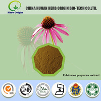 Herbal medicine Echinacea purpurea extract,made in china cichoric acid & polyphenol