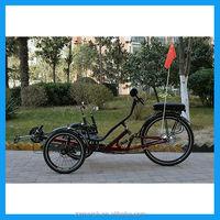 250W 3 wheel motorcycle e trike for sale
