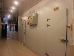 Freezer Cold Room Used/ Prefabricated Cold Rooms /solar powered cold rooms
