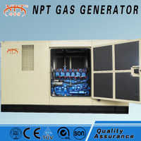 CE appeoved silent natural gas generator--- green power generator