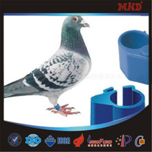 MDR10 Personalized pigeon racing pigeons/carrier pigeon ring bands