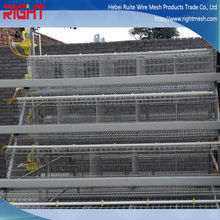 Layer egg chicken cage /poultry farm house design for sale