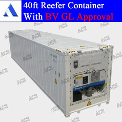 Brand new 40 foot refrigerated container