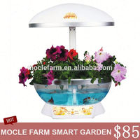 Best sellings home goods products