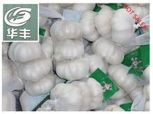 Garlic HFS0002- 2015 high quality manufacture fresh pure white garlic