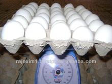 comprar huevos de pollo fresco