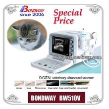 Pet Ultrasound Scanner(BW510V) reproduction imaging on bovine, equine, swine, canine,feline, ruminants,tendon, vet ultrasound