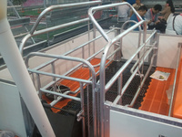PVC panel fence farrowing crate for pigs