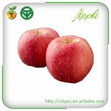 Fresh Red Fuji Apple Fruit Exporters Fresh Fruits and Vegetables