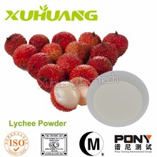 Lychee Seed Powder/ Pure Lychee Juice Extract/Natural Lychee Seed Semen Litchi Extract