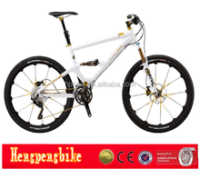 2015 l MTB mountain bike/bicycle mountain cycling/bicicle