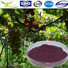 La naturaleza de semilla de uva extracto libre de aditivos 90% polifenoles