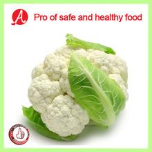High Quality Frozen White Broccoli