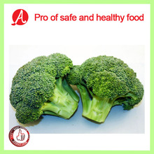 High Quality Frozen Broccoli Floret