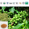 Top Quality 100% Natural Green Coffee Bean Extract for weight loss