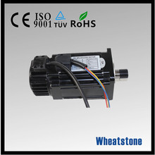 electric bicycle permanent magnet brushless dc motor