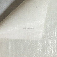 Laminated plastic woven greenhouse fabric new white eyelets tarpaulin with promotion price