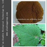 Natural Nettle P.E.1%