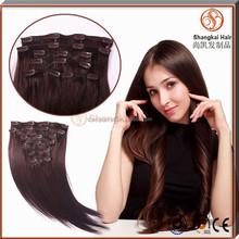 Wholesalen Natural Human Clip In Hair Extension