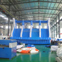 Inflatable giant dolphin slide/animal water slide for kids/ adult inflatable slides for sales