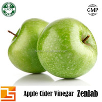 top quality dried vinegar powder from apple extract