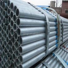 China alibaba Canada steel trading agency gi steel pipe/tube,pipe porn tube/steel tube 8,pre gl pipe