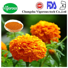 marigold flower extract lutein/marigold extract leaf plant extract