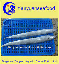 Frozen ribbon fish price( Trichiurus haumela )