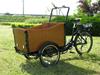 2015 hot sale electric dutch cargo tricycle / cargo trike
