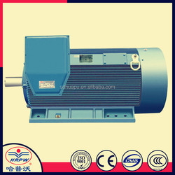 185~1600 KW High Voltage Electric Motor