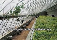 PE greenhouse plastic film