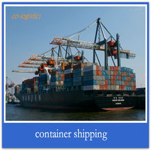 cargo ship freight services from China to Hamburg ------terry