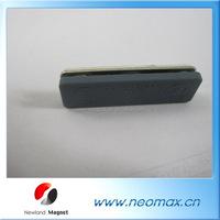 Plastic Changable Magnetic Reusable Name Badge