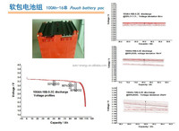 xinyongfeng LiFe cell Polymer pouch li-ion Lifepo4 battery 100Ah cell super power battery LFP20310230P