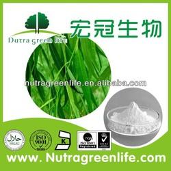 Willow bark P.E./salicin powder/willow bark plant extract/white willow salicin 98%
