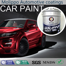 Chemical resistant hydrophobic coating for car paint