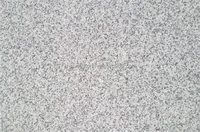 Chinese gold supplier high quality natural sesame white g655 granite