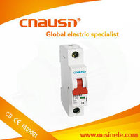 SB1-63( C45N ) low price 1p 63a MCB circuit breaker with CE certificate