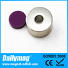 High performance plastic coated magnet