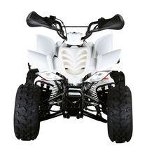 110CC EPA KIDS ATV (FA-E110)