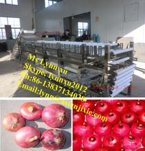 roller grading machine /onion grader / onion sorting machine