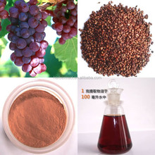 Free samples 95% OPC grape seed extract softgel capsule